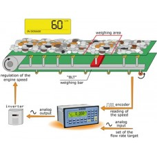 Indicator Cantarire E-Belt.