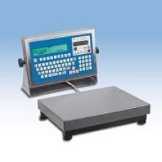 Sistem de verificare  statica